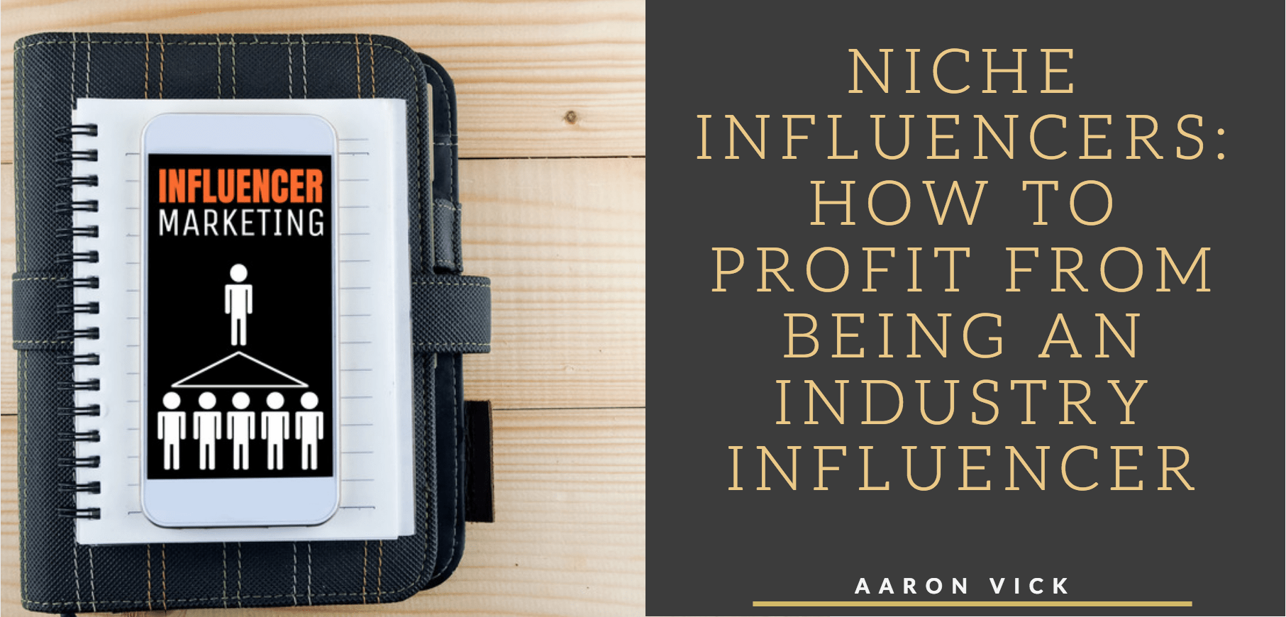 Aaron Vick - Niche Influencers: How To Profit From Being An Industry Influencer